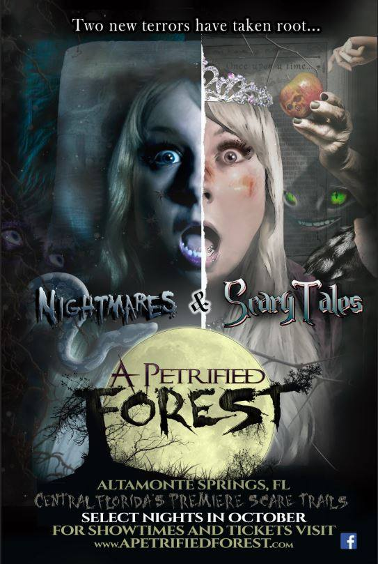 A Petrified Forest 2016