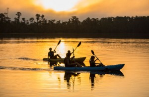 Things To Do Orlando:  Kayak Eco-Tour