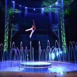 Things To Do Orlando:  Cirque Italia
